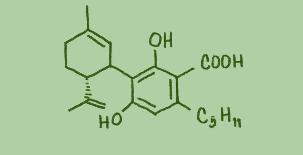 the CBDa molecule