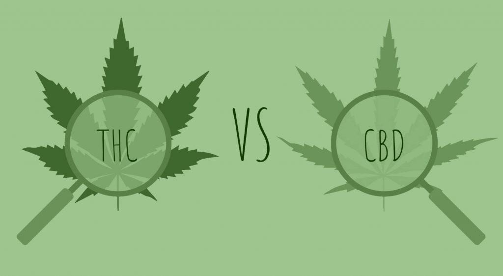 THC vs. CBD