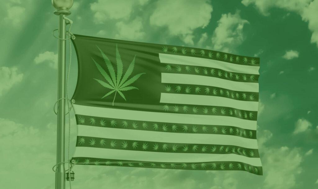 american-cannabis-flag